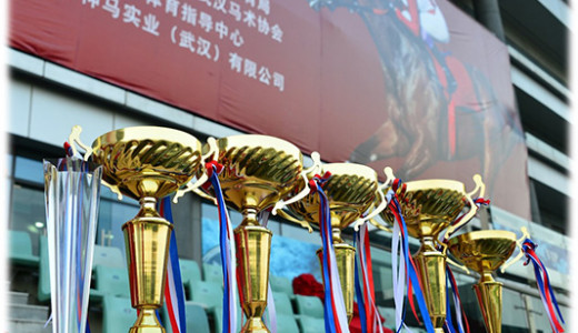 12th China Wuhan International Horse Racing Festival, 26 Oct 2014