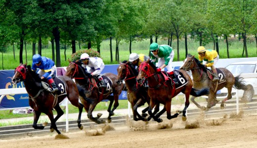 2015 Wuhan Open Horse Racing, 13 June 2015