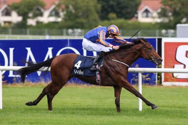 Image result for Johannes Vermeer horse