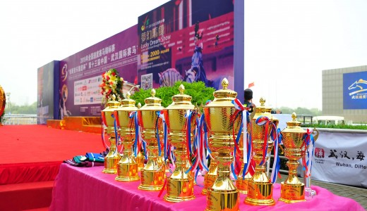 "2015 CHINA FLAT RACING TOURNAMENT ""PARSONS MUSIC CORPORATION CUP 13TH CHINA WUHAN INTERNATIONAL HORSE RACING FESTIVAL, 24 October 2015"