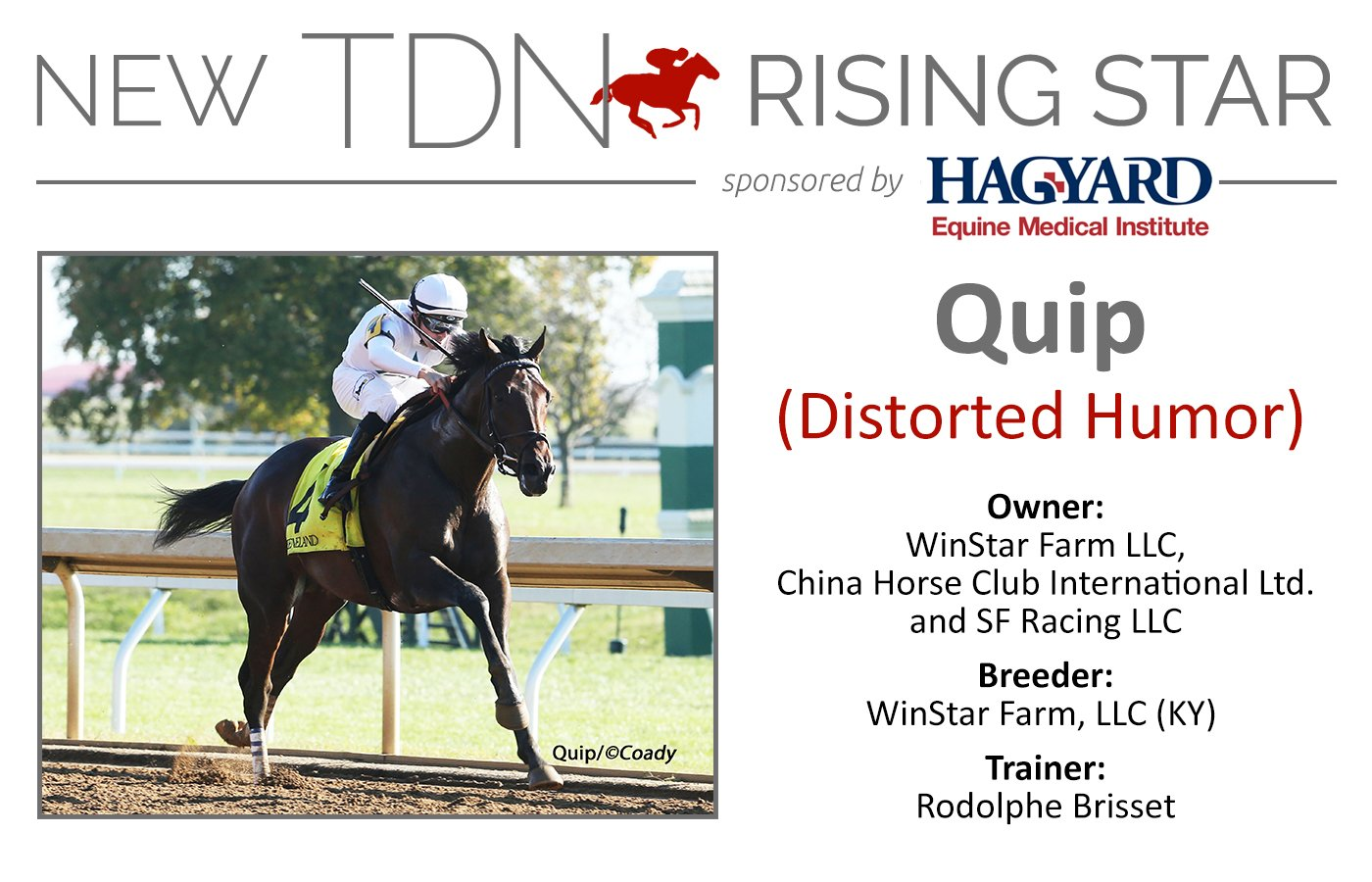 TDN Rising Star