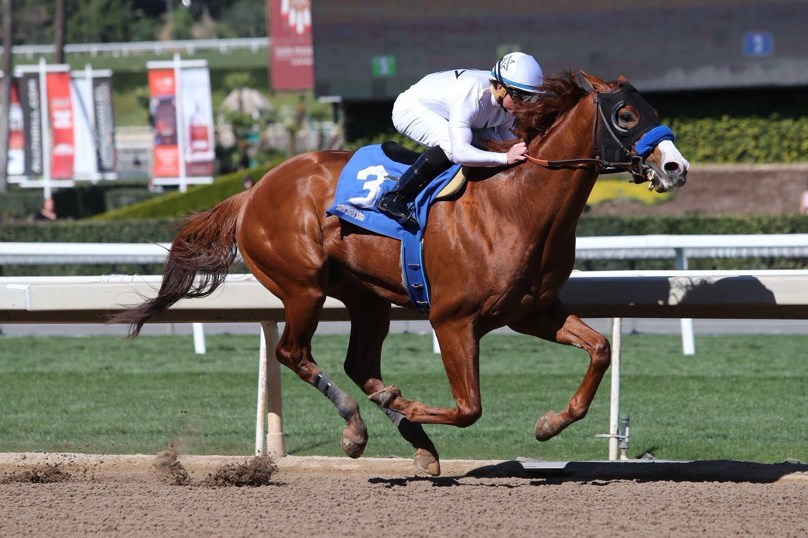 Justify To Join Kentuky Derby Trail After Emphatic Debut