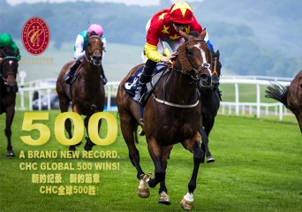 500 wins front1