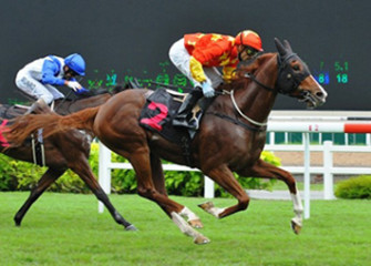 Tropaios-courtesy-of-Singapore-Turf-Club-1