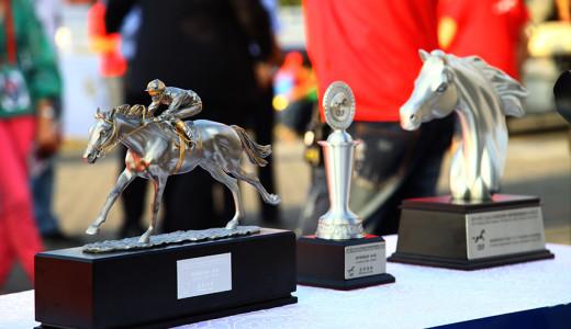 2014浙江九龙山全国速度赛马骑师邀请赛暨驭马文化节