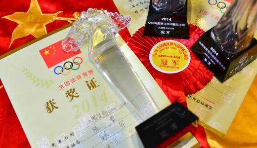 2014第五届中国马术节