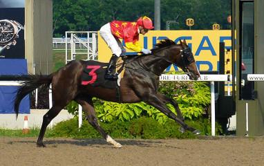 AlValore-20150405-race9
