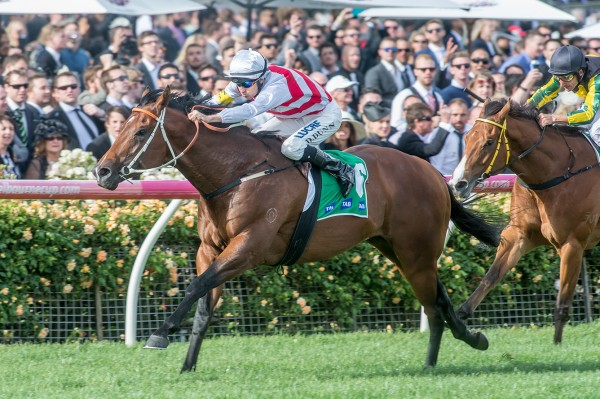 Race 9, Deep Field, Dwayne Dunn_01-11-14-a